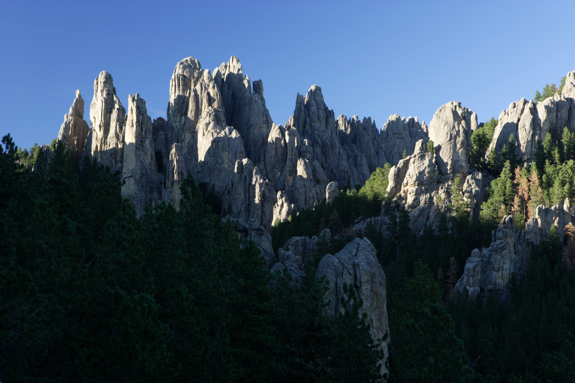 Vanocker Canyon Campground - Attractions - Needles Highway